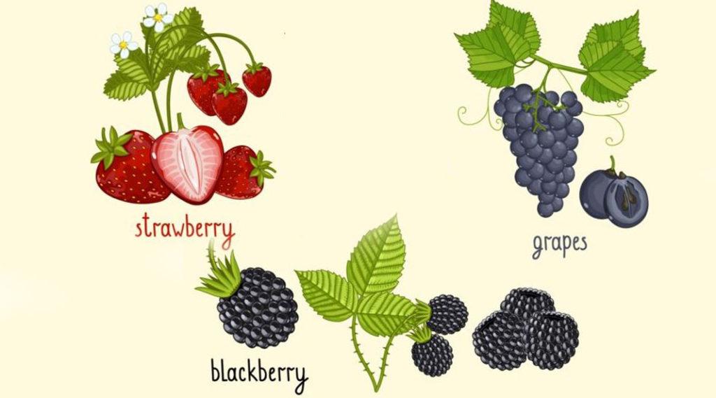 Sursa foto: http://freedesignfile.com
