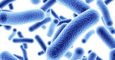 O năuă descoperire, cocktail de bacterii și legume care ucide celulele cancerului colorectal!