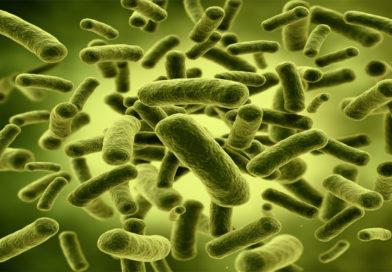 Noi ghiduri de tratament pentru Clostridium Difficile