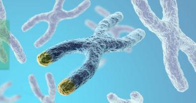 Blocarea unor enzime, o nouă speranță în tratarea cancerului