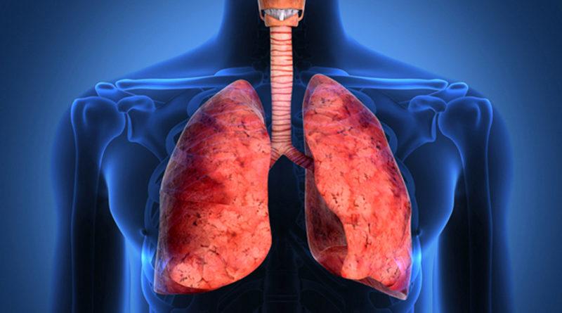 A fost descoperită cauza fibrozei pulmonare!