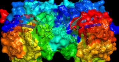 Oamenii de știință au descoperit un nou mod de a utiliza enzimele
