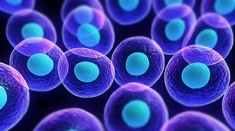 Ce nu știai despre clonarea celulelor umane