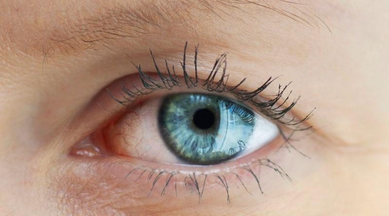 Cercetare Harvard : tratament nou pentru glaucom