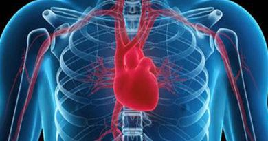 Află care este legătura dintre rigiditatea arterială și bolile cardiovasculare!