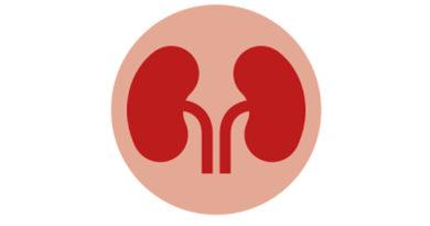 A fost descoperit un test care poate indica dacă o persoană este predispusă să dezvolte cancer renal