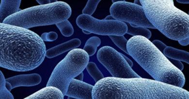 A fost descoperită o structură specială care poate acționa ca un scut împotriva infecțiilor
