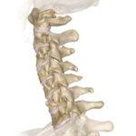 Ciment chirurgical cu particule magnetice, noul tratament pentru fracturile de coloană