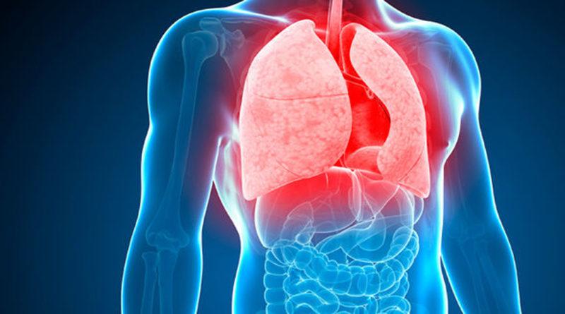 A fost aprofundat modul în care tuberculoza se dezvoltă și se răspândește în organism
