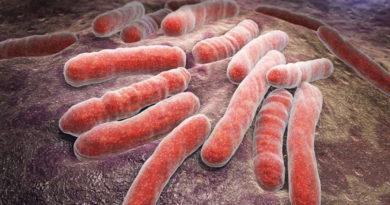 Bacterie găsită în sol, benefică în tratarea tuberculozei