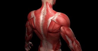 Descoperire care poate ajuta pacienții cu distrofie musculară