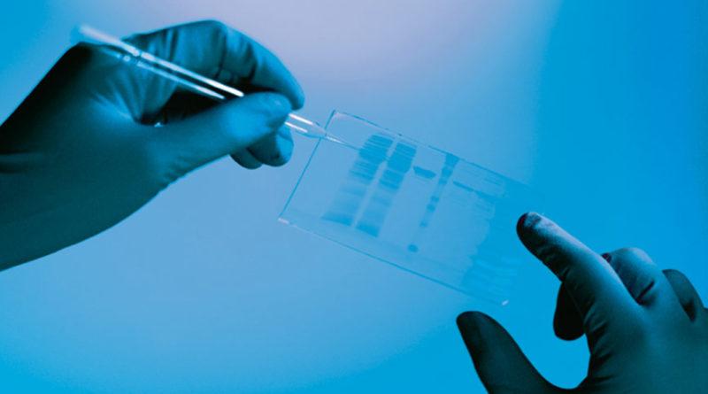 Compusul antibiotoc natural, creat pentru combaterea infecțiilor rezistente la medicamente