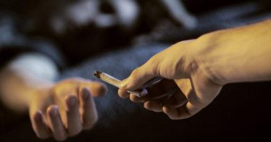 Consumul de marijuana și efectele negative pe care le poate avea asupra creierului tinerilor