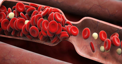 Cercetătorii au creat în premieră vase de sânge artificiale