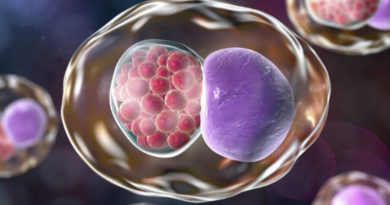 A fost dezvoltat un nou mod de prevenire și tratare a celei mai comune boli cu transmitere sexuală