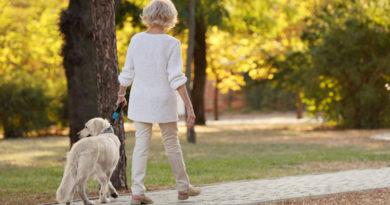 Atenție! Plimbatul câinelui poate fi o activitate periculoasă pentru persoanele în vârstă!