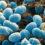 A fost descoperit modul în care un tip de bacterie eliberează toxine care ne fac să ne îmbolnăvim