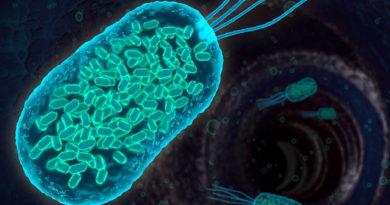 A fost descoperit un factor cheie pentru tratarea bolilor inflamatorii intestinale