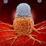Cercetătorii au făcut un pas important în tratarea cancerului pancreatic