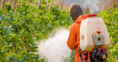 Expunerea la pesticide și riscul de boli cardiovasculare la copii