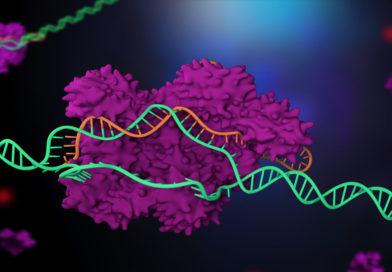 Studiu uimitor: în iunie se va naște al treilea copil modificat genetic