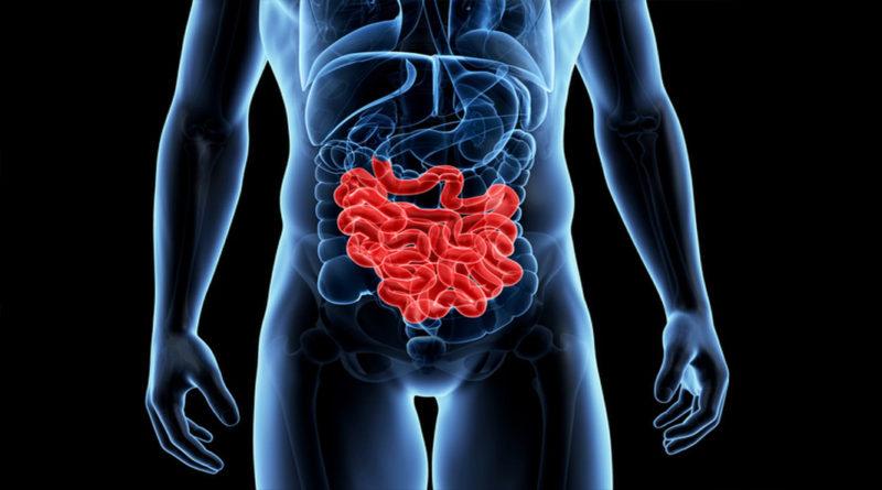 Descoperirile care ar putea ajuta la crearea de noi medicamente pentru bolile gastrointestinale