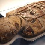 Au fost descoperite cinci mumii cu o vechime de 500 de ani care au suferit de ateroscleroză
